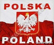 Naklejki / wlepki z napisem Polska i Poland oraz orłem 15 x 15 cm dla kibica